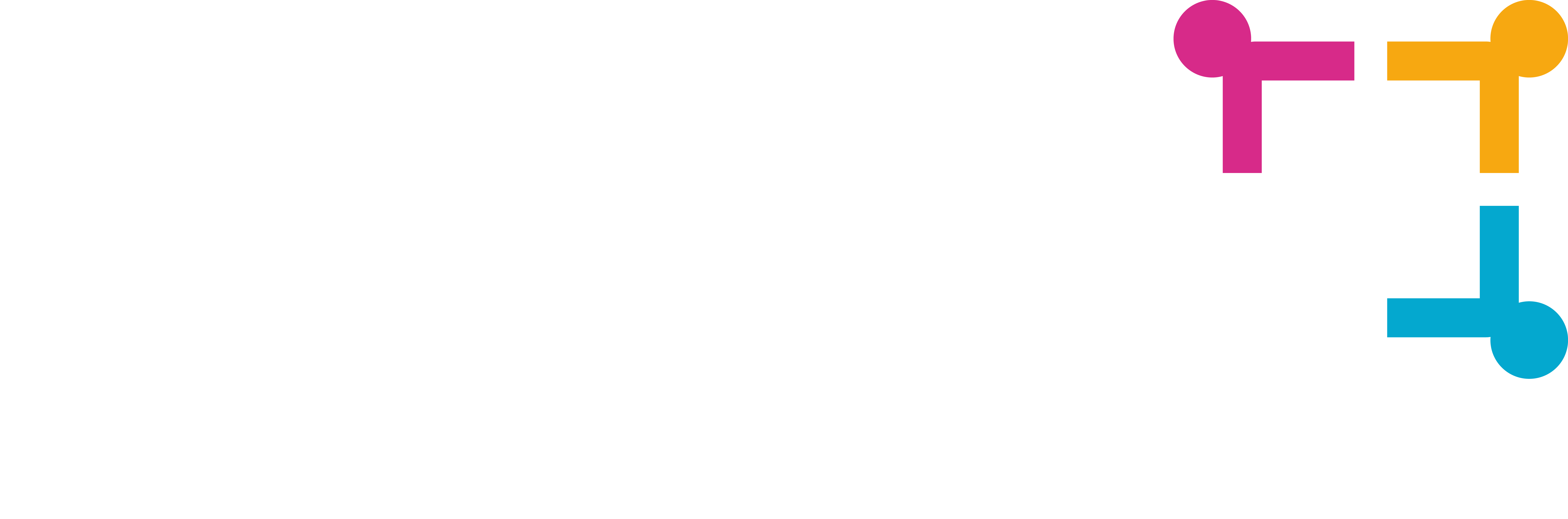 Logo Bacofisc blanc
